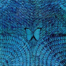 santana-borboletta