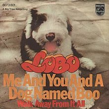 220px-Me_and_You_and_a_Dog_Named_Boo_-_Lobo